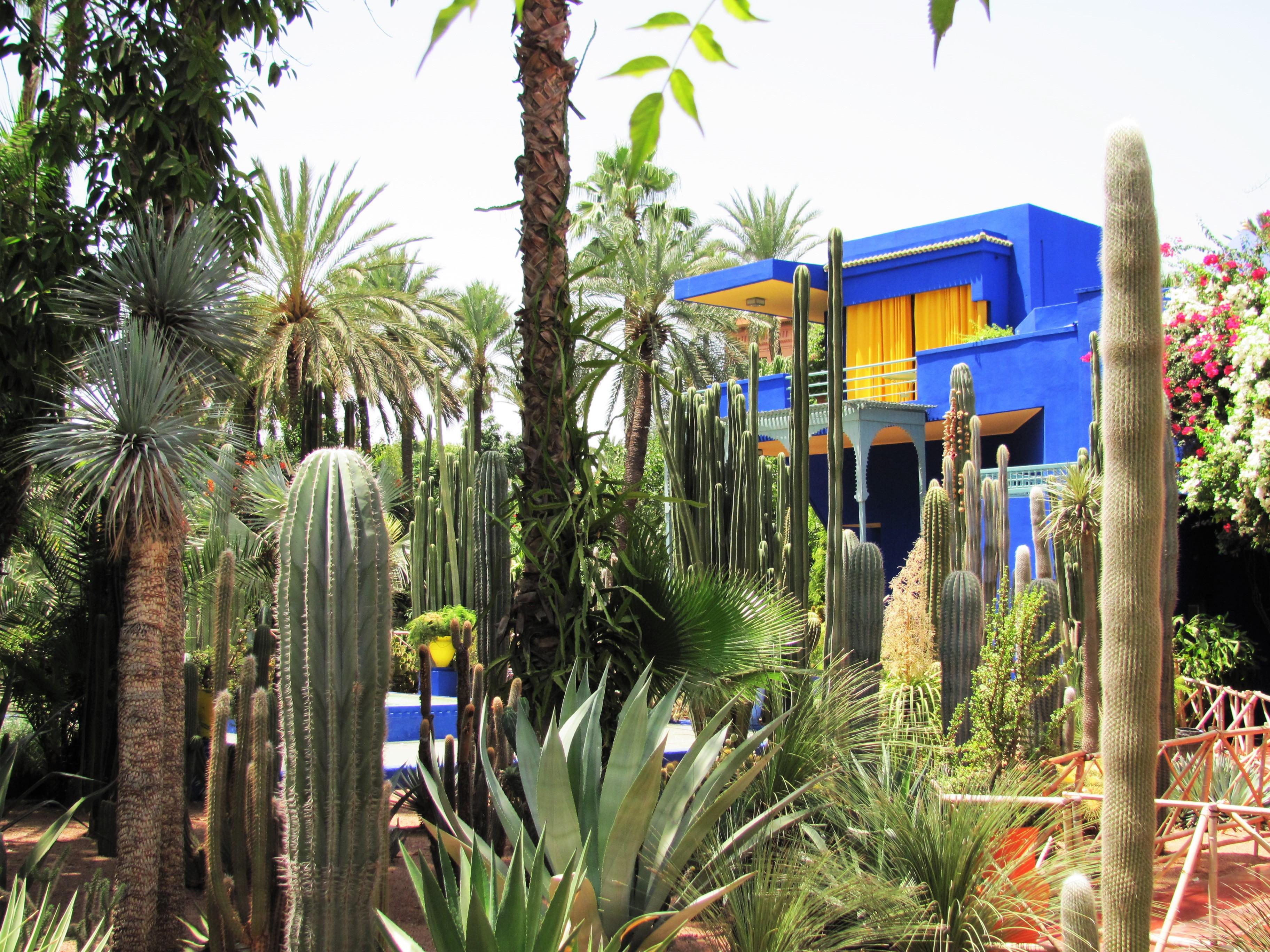 Marrakech Marokko Citytrip stedentrip paradijs rust oase stad