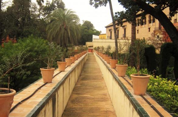 real alcazar moors andalusie spanje sevilla stedentrip citytrip bezienswaardigheden