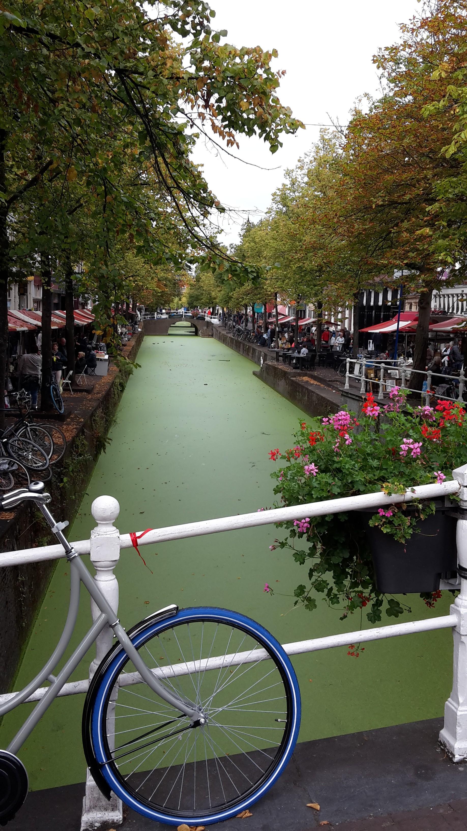 Delft stedentrip Nederland