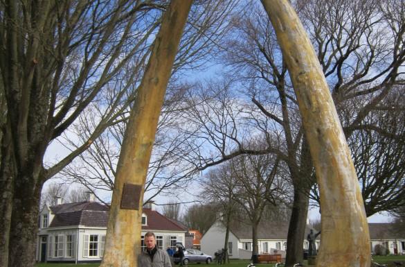 Schiermonnikoog Waddeneilanden Natuur Vogels Waddenzee Cultuur Natuur Eilanden Friesland Noordzee