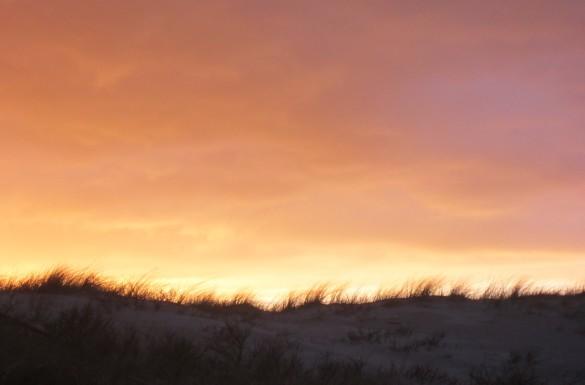 Texel Den Burg Eiland Waddeneiland Duinen Strand Zee Noordzee Camping Kamperen Oudeschild Pasen